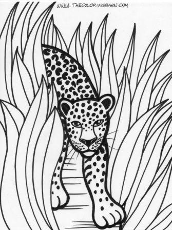 dibujo de leopardo para los niños